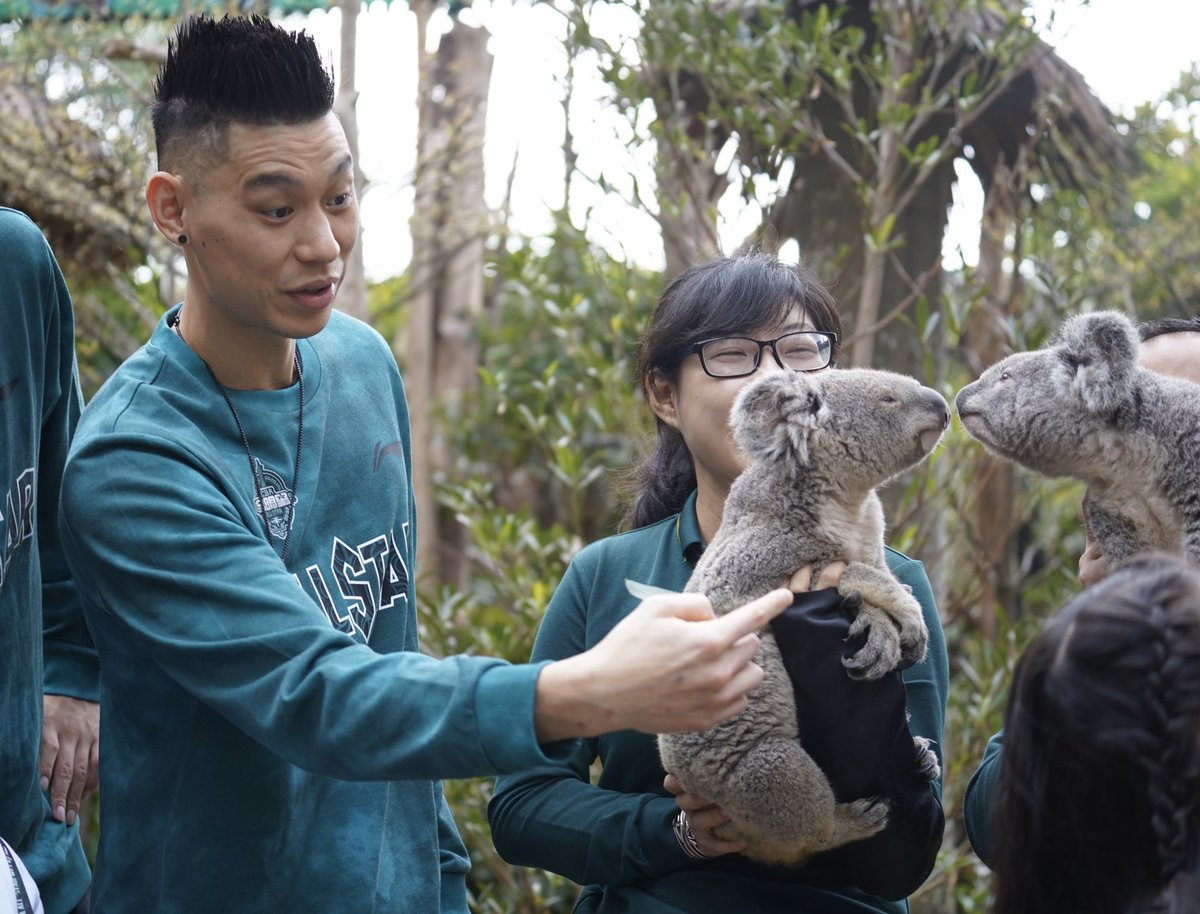 RT @JLin7 Was lucky to see koalas in Guangzhou during my All Star Weekend! Awesome challenge supporting Australia @kskgroup2017 ! 加油! https://t.co/BeKcHugJE2