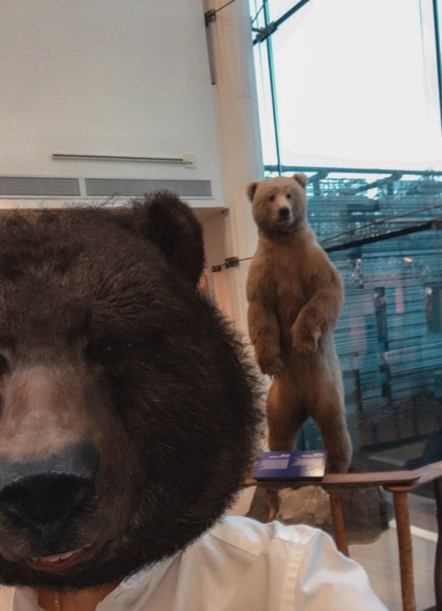 Happy #MuseumSelfieDay! #BearSelfie 🐻🤳
