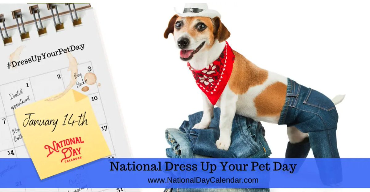Yesterday was National Dress Up Your Pet Day! How'd we miss that?? 😯 Love to see your pix below! 👇🏼 Thanks to Amber for the tip! ❤️  #NationalDressUpYourPetDay #DressUpYourPetDay