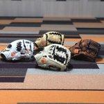 Image for the Tweet beginning: Glove Day for @clemsonsoftball!🔥 #MizunoCustom