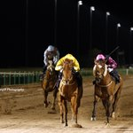 10th win for 8yo g ZYLAN (Kyllachy) @CallumRodrigue4 in 6f handicap @Southwell_Races tonight for @rogerfell22