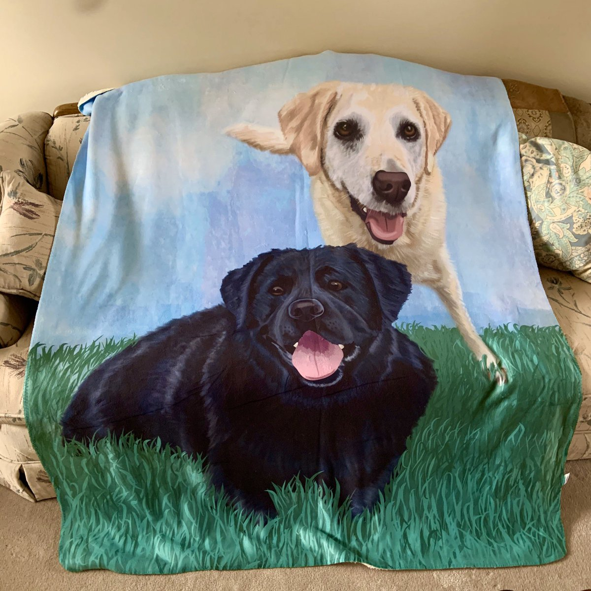 Here is the final product of my illustration on a Sherpa blanket 50x60 inches Now my dad can he can cuddle his favorite labbies whenever he wants. #petportrait #memorieblanket #talesofalab #dogsofinstagram #dogsofbuffalo #buffaloartist #petillustrationpic.twitter.com/L6E865hthR