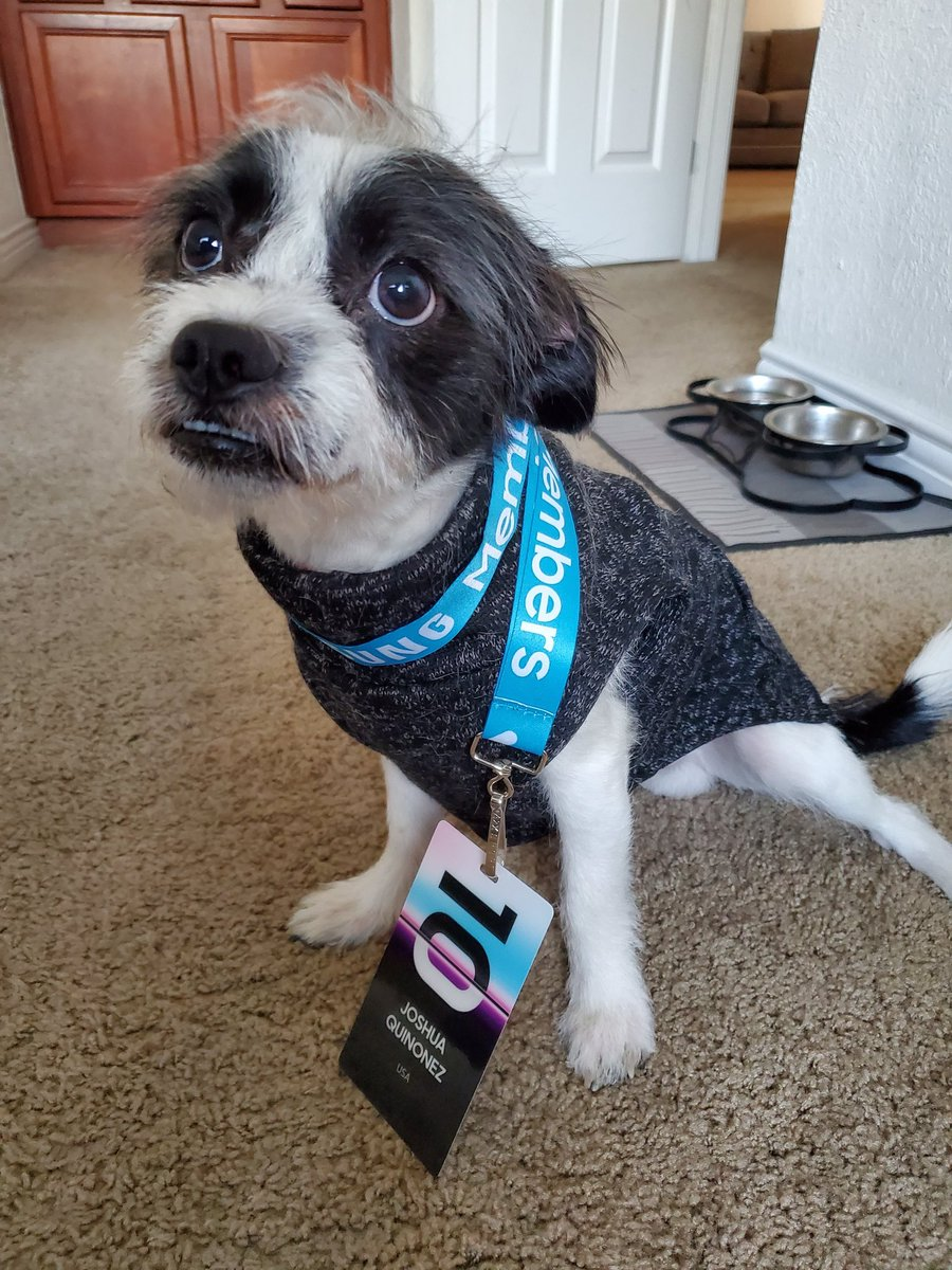 Oreo wants to hang out with his Samsung members at the @SamsungMobileUS Unpacked2020 event! Lol Any chance we can make this possible??#withGalaxy @SamsungMobile #galaxys10plus #SamsungEvent #Samsungpic.twitter.com/LfZxM4tqDm