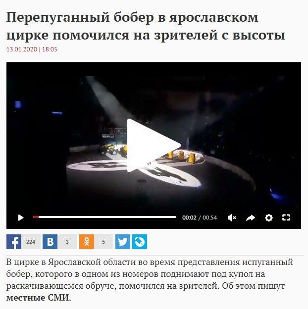 Маргарита Симоньян посетила ярославский цирк