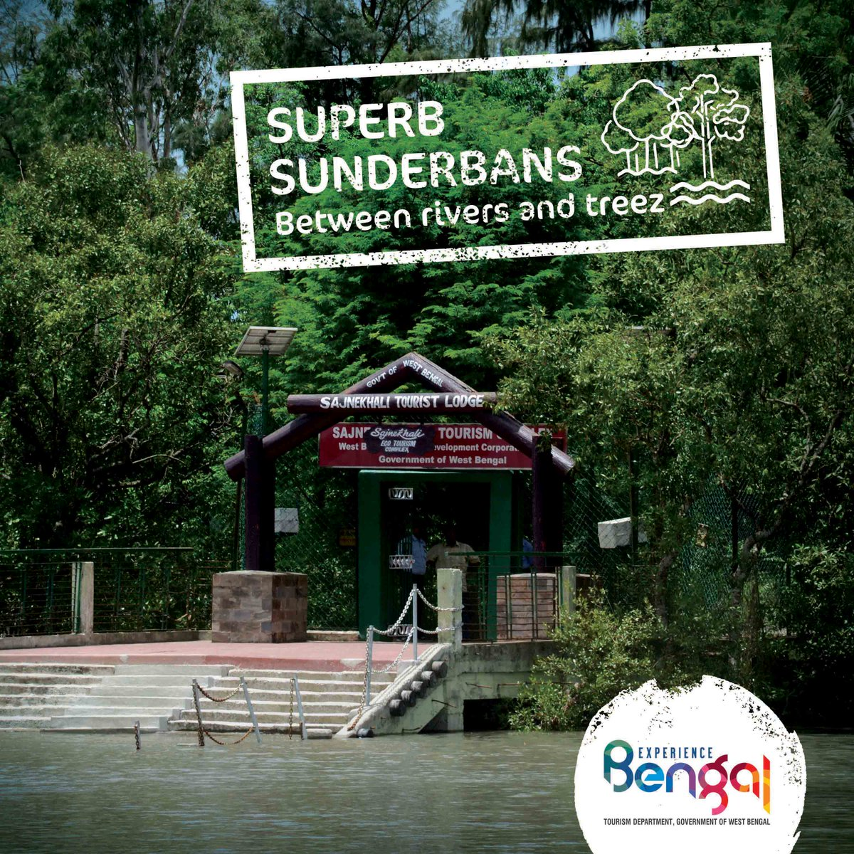 Spend some quality time surrounded by the greenery and flowing waters that define the Sundarbans.   Come, explore the Beauty that is Bengal at http://bit.ly/2ZMvmyv  #BengalTourism #ExperienceBengal #Sundarbanspic.twitter.com/oGQWbAzfii