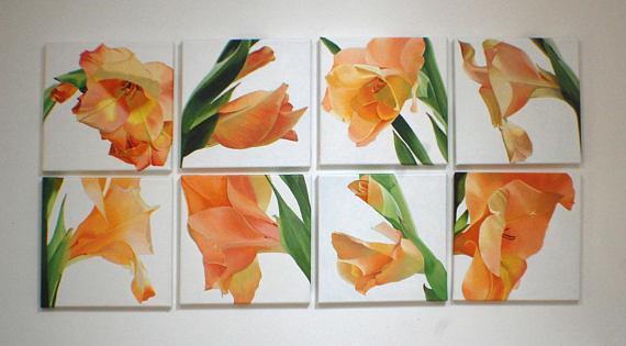 Gladioli Painting Installation Orange Pink Macro Flowers http://dld.bz/gvATM #installation #interiordesign homedecor pic.twitter.com/nGE1fuiGmF