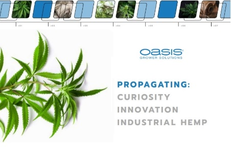 OASIS and industrial hemp propagation? Find out all about it here: Info, product news and FREE downloads! http://ow.ly/sCkh50xWwHApic.twitter.com/ndJFlG1OoG