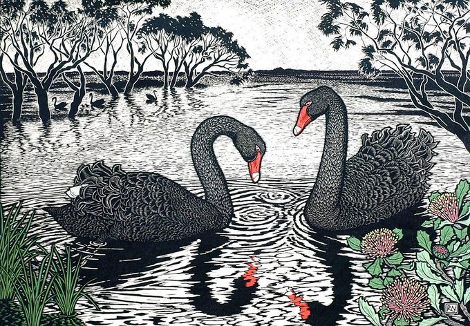 "The graceful swan, ""Eala"" in Scots Gaelic, ""Eala"" in Irish, ""Alarch"" in Welsh, ""Alarc'h"" in Breton, ""Olla"" in Manx, ""Alargh"" Cornish, is associated with the goddesses of Celtic peoples, with links to the Otherworld (Aos Si).  Linocut by Rachel Newling #womensart #FolkloreThursday<br>http://pic.twitter.com/jHjZB8k0Da"