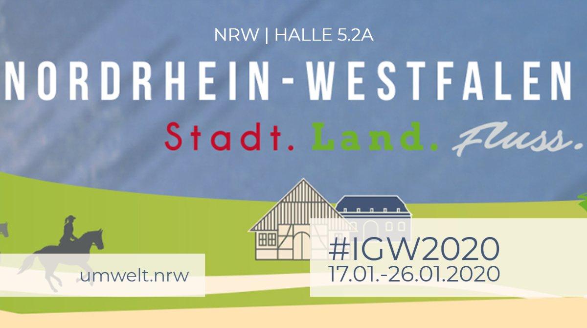 #IGW2020