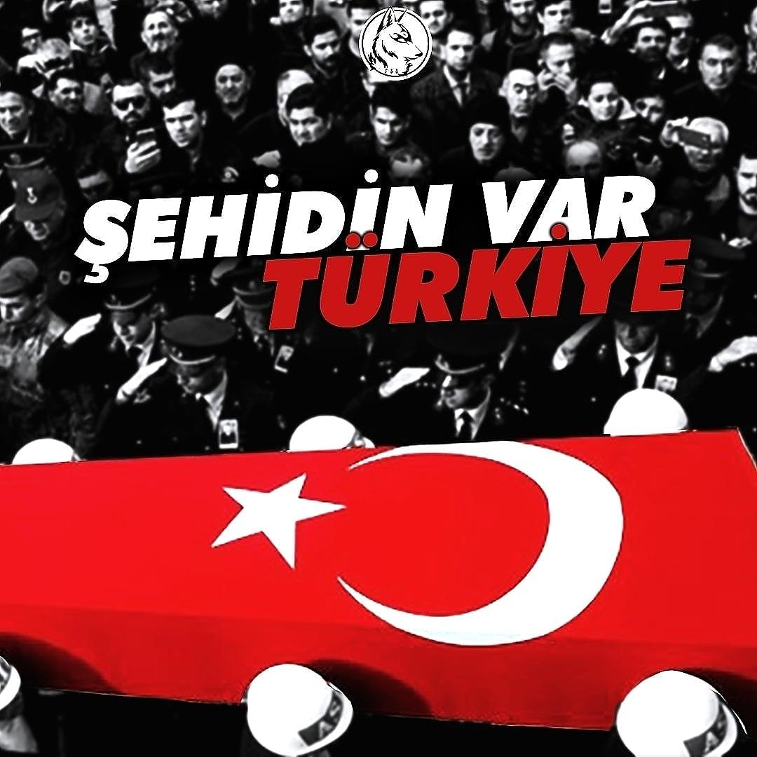 ŞEHİDİN VAR TÜRKİYE Suriye Tel Abyad'da düzenlenen bombalı saldırıda 3 Askerimiz Şehit oldu. Türk milletinin başı sağ olsun.