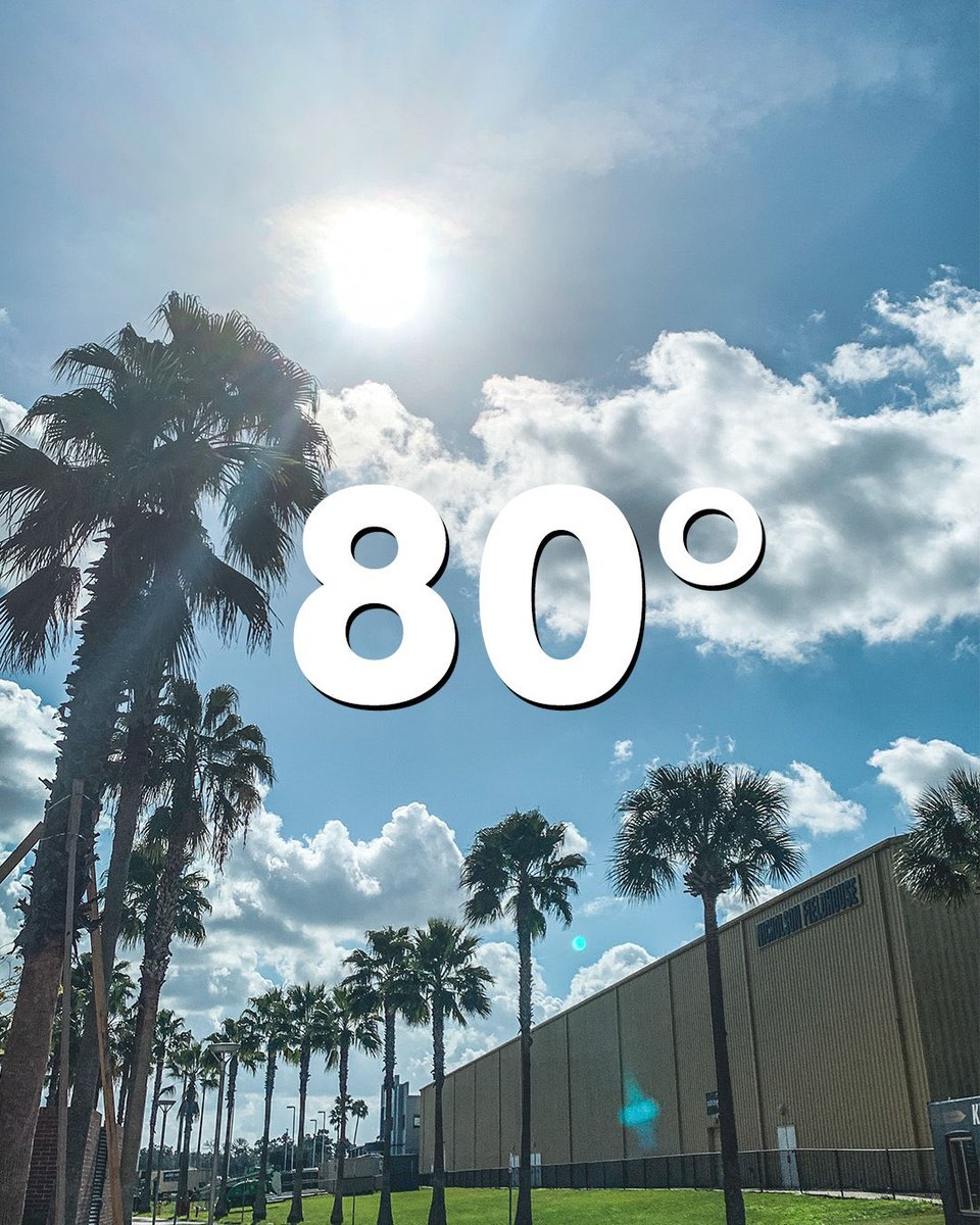 Retweet to make your cold friends jealous 😎🌴