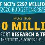 Image for the Tweet beginning: New from NCI's Bottom Line