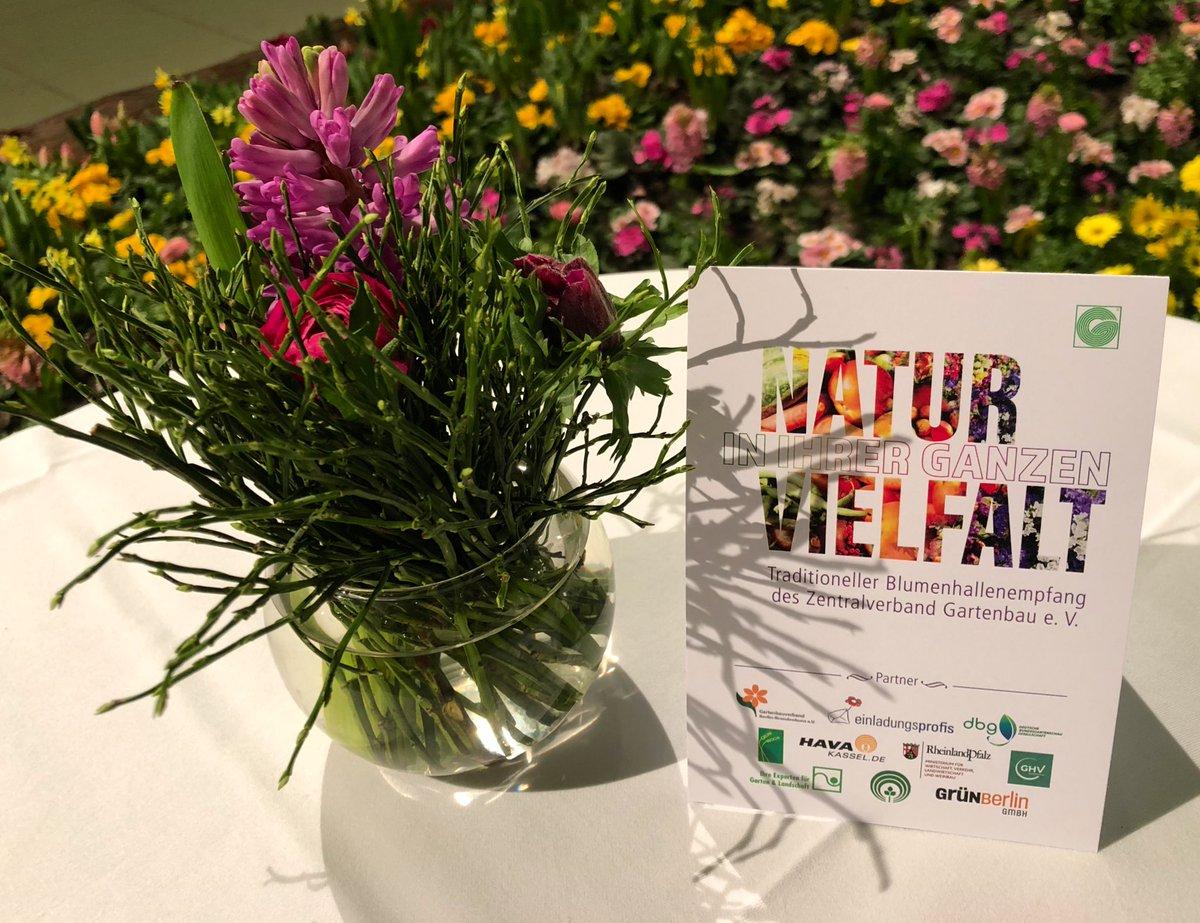 """Unter dem Motto """"Natur in ihrer ganzen Vielfalt"""" eröffnet heute die @gruenewoche mit dem traditionellen #Blumenhallenempfang - die Gestaltung der Halle 9 wurde dieses Jahr von unserem Mitgliedsbetrieb Flöter & Uszkureit GmbH übernommen - u.a. wurden über 100.000 Pflanzen gesetzt. pic.twitter.com/wpwbRSji4y"""