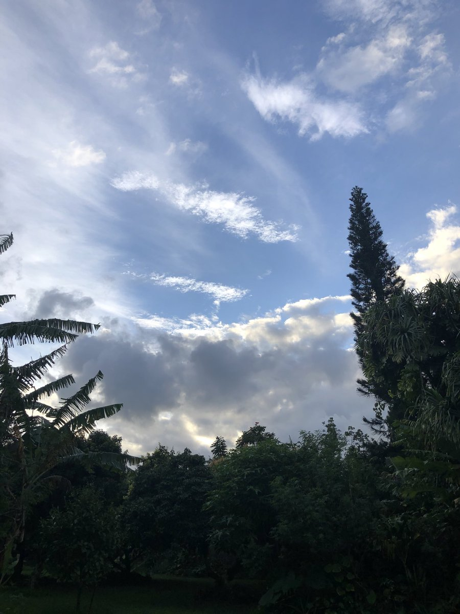 test Twitter Media - Partly cloudy and calm in haiku. #CMWeather #Maui #MagicalMaui #ConsciousMaui #MauiNokaoi https://t.co/HGaxCUudY3