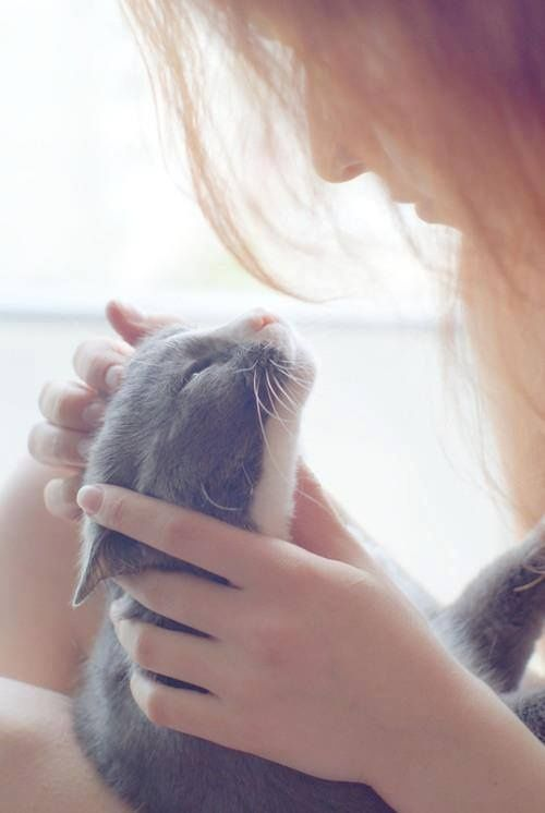 """An open heart is the best medicine."" #GoodMorningWorld <br>http://pic.twitter.com/fPQuLBBqym"