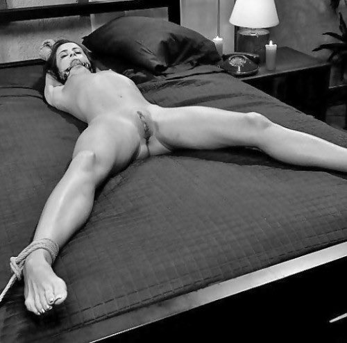 Torture yourself bdsm dom master dominatrix apron