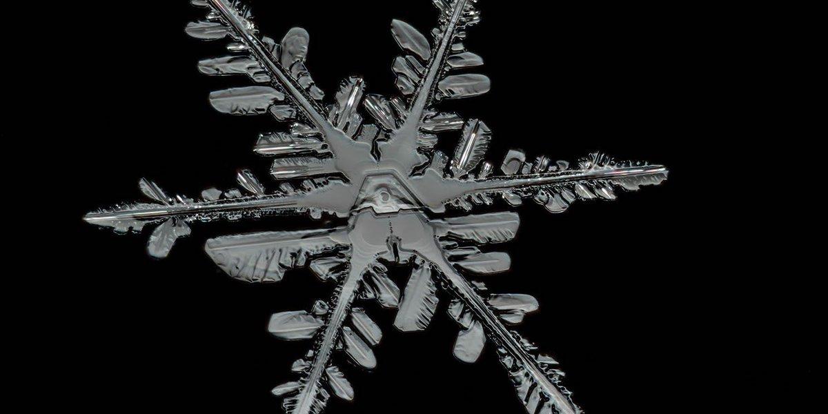 whispers become songwalk toward the infinitekeep pace with the earth#Winter2020 #Haiku #KhalilGibran #TheProphet #Work