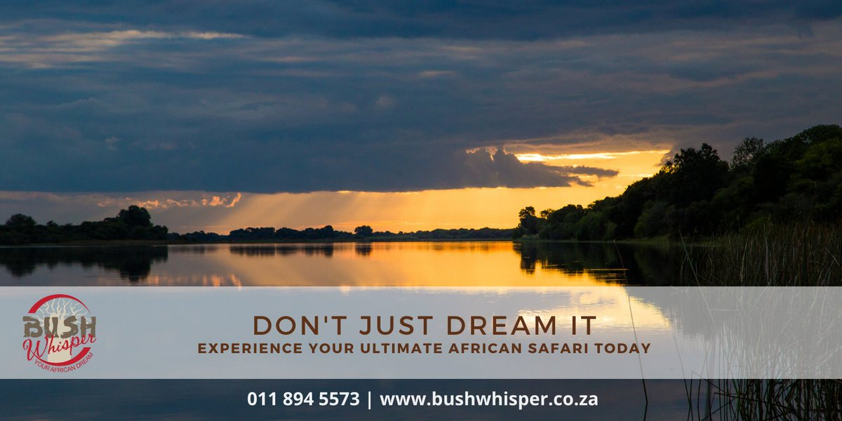 Make your dream Safari a reality today, with Bush Whisper! http://bit.ly/2RcSaoT  #lovewhatwedo #lovewhatwedo #bushwhispersafari #bushwhispercamping #bushwhisperluxurytravelpic.twitter.com/rzbrc2OGkT