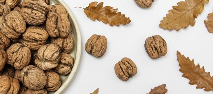 test Twitter Media - 📣Un mayor consumo de nueces puede ayudar a prevenir el #DeterioroCognitivo en #PersonasMayores según revela un estudio realizado por investigadores del  @CIBER_ISCIII  sobre Fragilidad y Envejecimiento Saludable  https://t.co/UHGCYwAw4w https://t.co/roCrWOgdC0