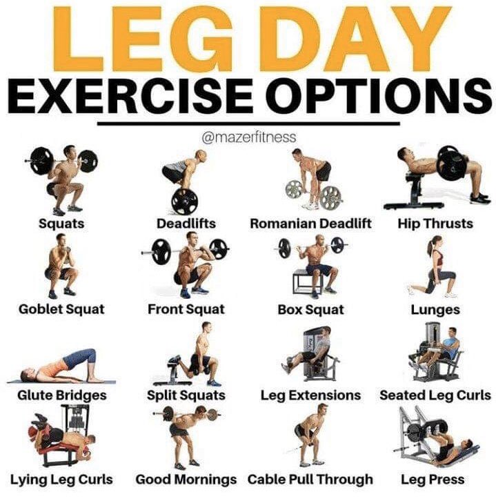 Who does legs on Friday?  Follow these Leg Day Options  Check out http://www.riptoned.com    #fitfam #legday #abs #shoulderday #arm #fitness #fitnessmotivation #fitnesslife #gym #gymtime #bodybuilder #bodybuilding #crossfit #eatclean #eatclean #exercise #gains #beastmodepic.twitter.com/a9ee9bBQKp