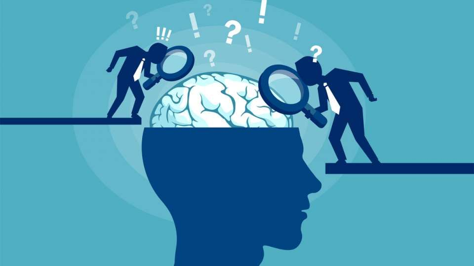 Why L&D needs neuroscience: @stellacollins explores whether it has anything to teach us about learning in a workplace setting: buff.ly/31JhCUP
