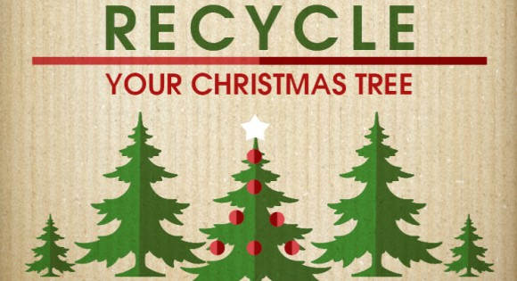 If you haven't already done so this is your last opportunity to recycle your Christmas Tree. #ChristmasTree #recycling is available at #Mohill and #Manorhamilton Civic Amenity Centres today and tomorrow. Details and opening times here: http://bit.ly/34QQPYe #Leitrim #Recyclepic.twitter.com/JfHaGhBd1f