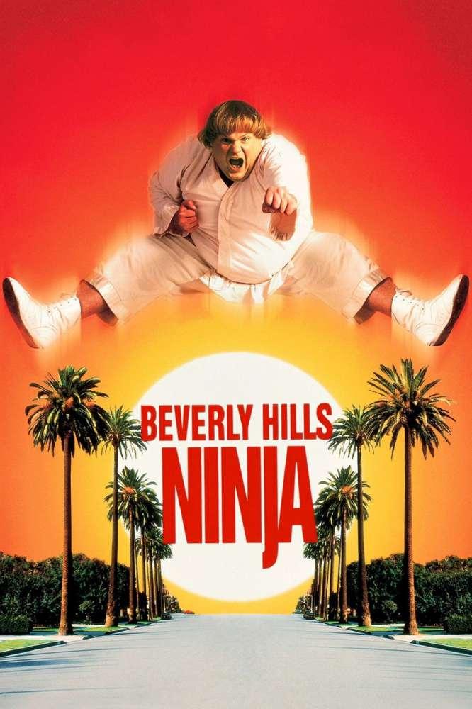 Beverly Hills Ninja was released on this day 23 years ago (1997). #ChrisFarley #NicolletteSheridan - #DennisDugan http://www.mymoviepicker.com/film/beverly-hills-ninja-113208.htm…pic.twitter.com/fkqMts7504