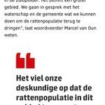 @Stadsgrachten - Hond gevaccineerd tegen Weil en tóch besmet en overleden #ratten #leptospirose @rivm @bgmeerburg https://t.co/ZeyP8x4YM2 https://t.co/ioKT4FNJRU