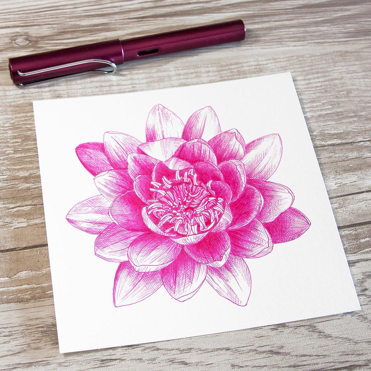 Ya no me acuerdo... #drawingflowers #inkdrawing #fountainpendrawing #fountainpen #fountainpenink #fountainpenaddict #lamy #lamyfountainpen #lamyalstar #diamineink #pinkhope #cansonpaper #cansonimagine #dibujoatinta #papelcanson #flordeloto #lotusflower #igerszgz #instasketch pic.twitter.com/knoSASRsJT