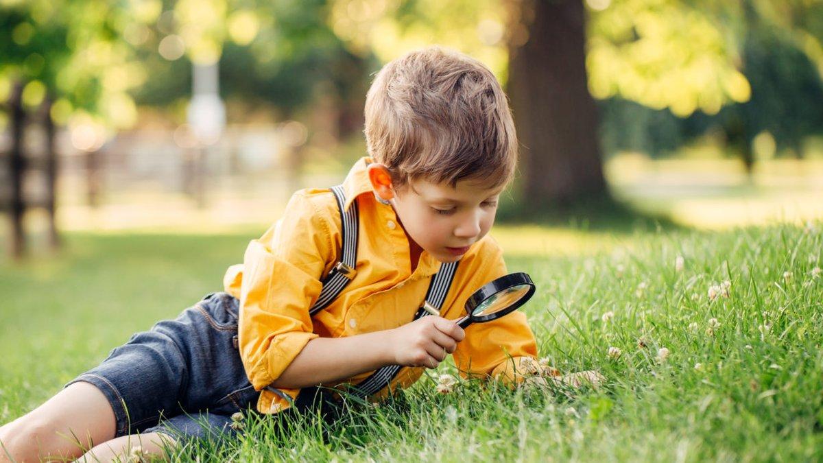 ¿Sabés qué es la slow educaion?, ¿cómo puede aplicarse en los centros educativos? https://bit.ly/2Nt2nuI #Educación #Sloweducation #EducaciónPrimaria #EducaciónInfantil #Educaciónsinprisapic.twitter.com/SaheoJ6Hv1