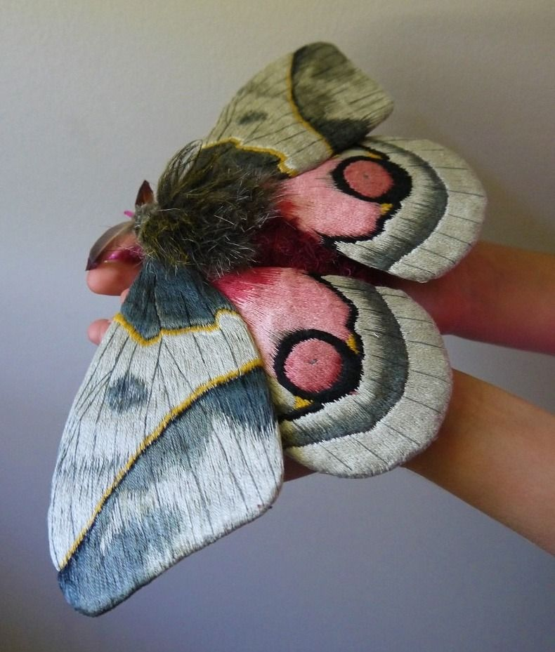 Yumi Okita, known for her fabric, embroidery thread, fake fur, wire, and feather sculptures of butterflies and moths #womensart <br>http://pic.twitter.com/aGLHJeSbyj