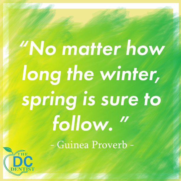 Forward-thinking is key  #thedcdentist #happyandhealthy  #holistichealing #holisticdentist  #biologicaldentistry #integrativemedicine #sustainable #ecofriendly #smileready #healthysmile #proverbs #africanproverb #positiveaffirmations #nature #winter #spring #forwardthinkingpic.twitter.com/HGfwQ2df3N