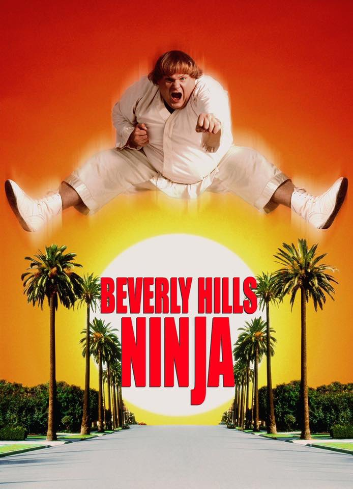 On this day in 1997, Beverly Hills Ninja came out in theaters. #OnThisDay #BeverlyHillsNinja pic.twitter.com/tfOlKUJybp