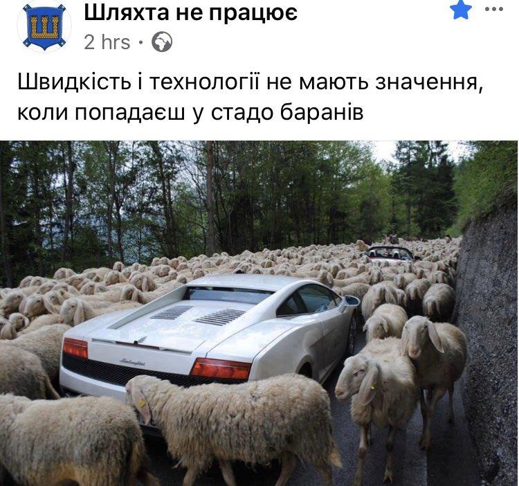 """Мы хотим, чтоб детали платежки за газ были видны в приложении """"Дія"""", - Ковалив - Цензор.НЕТ 3171"""