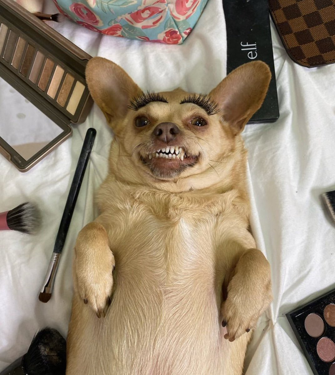 When you get back from Ulta Beauty and can't wait to try on all your new makeup 🥰