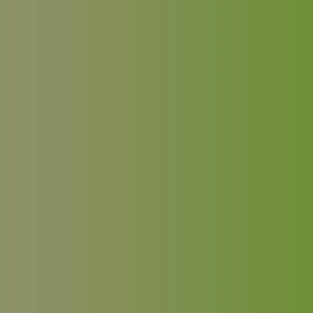 🌳 N A T U R E 🌳 • @ximenasantana1 @itssmarcoss • • #nature #naturephotography #photography #travel #love #photooftheday #landscape #autumn #instagood #beautiful #naturelovers #picoftheday #ig #sunset #photo #art #travelphotography #sky #wildlife …