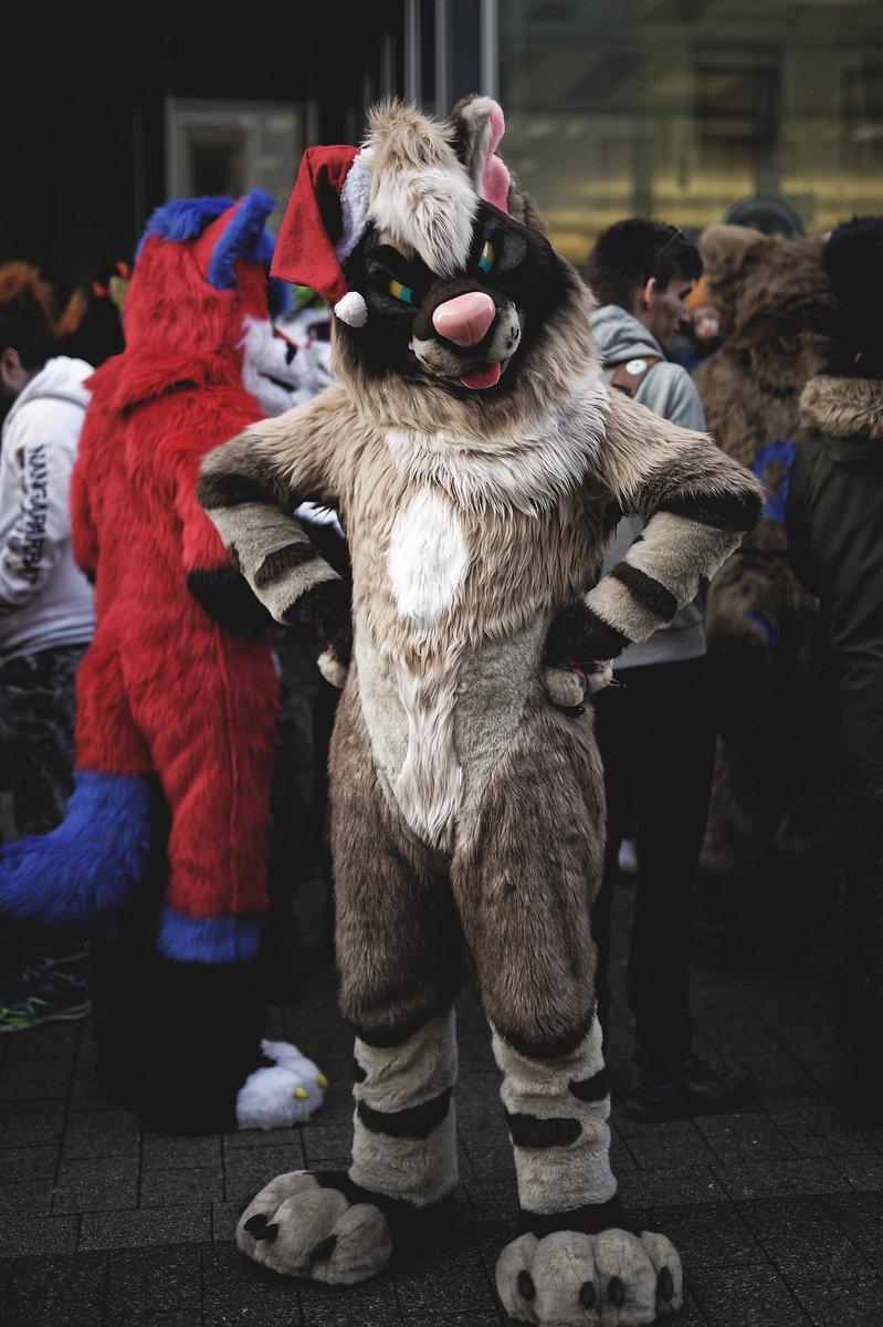 Hey! What did you say to me!?🤨 #FursuitFriday   📸:FoxFlummox 👔: @mixedcandy