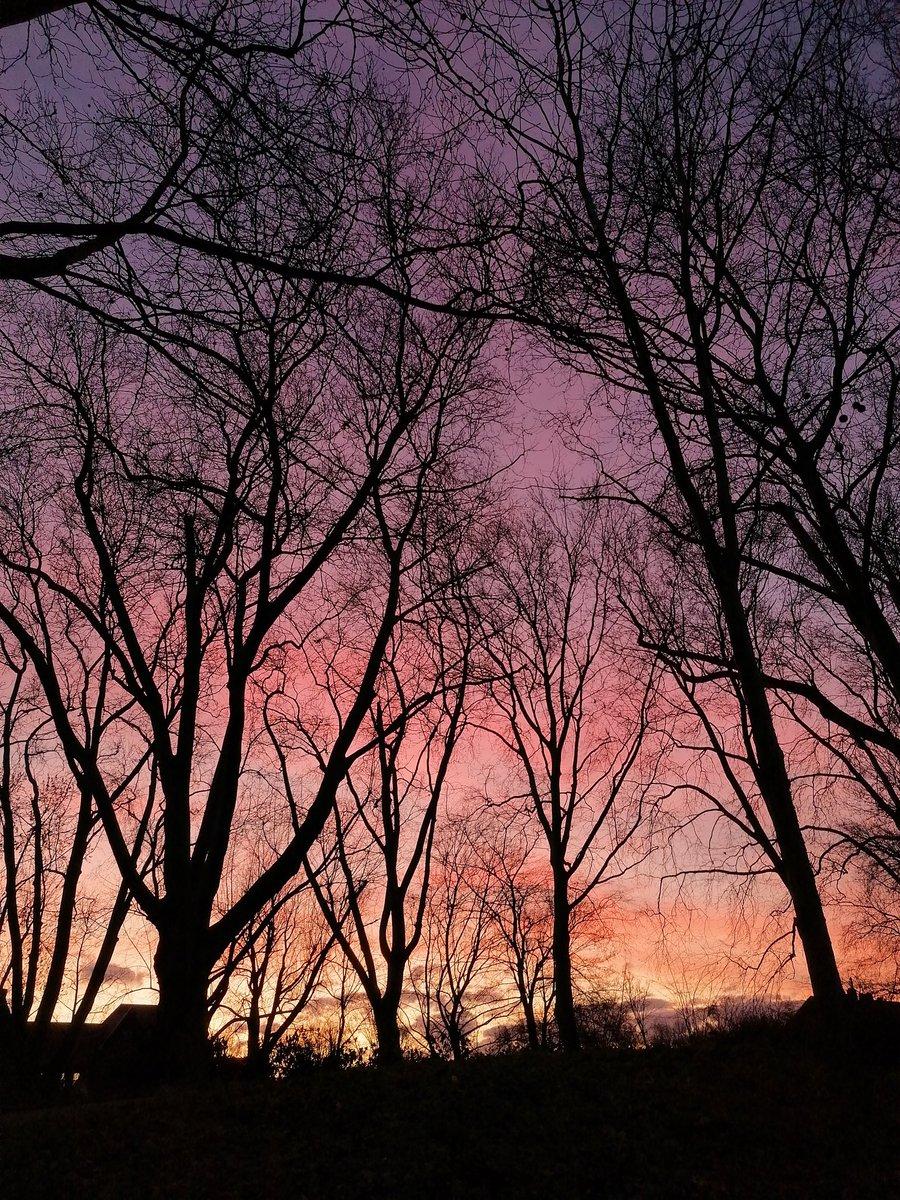 Nachtrag von heute morgen. Auf dem Weg zur Arbeit hatte #EssenRuhr den Himmel schön! pic.twitter.com/WYXLMsBSiN