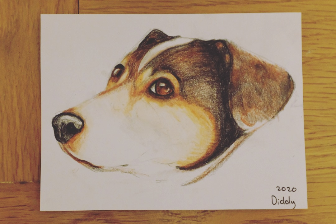 Day 17/366 of #aphotoaday #project365 An amazing portrait of a family dog by my talented young daughter. It's a perfect likeness and a thoughtful birthday present for his owner pic.twitter.com/BFzCm3UGqi