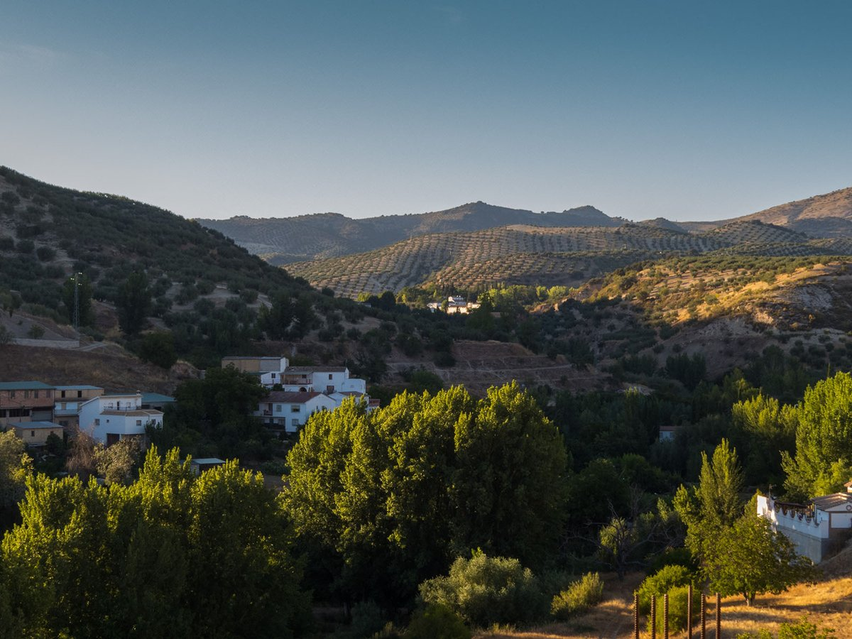 Have you heard of the historic town of #Algarinejo, where not only can you enjoy the real #Spain, but now visitors can truly experience an idyllic #olive oil route? It's like stepping back in time...#travelinspires #travel  @1916Gourmet -
