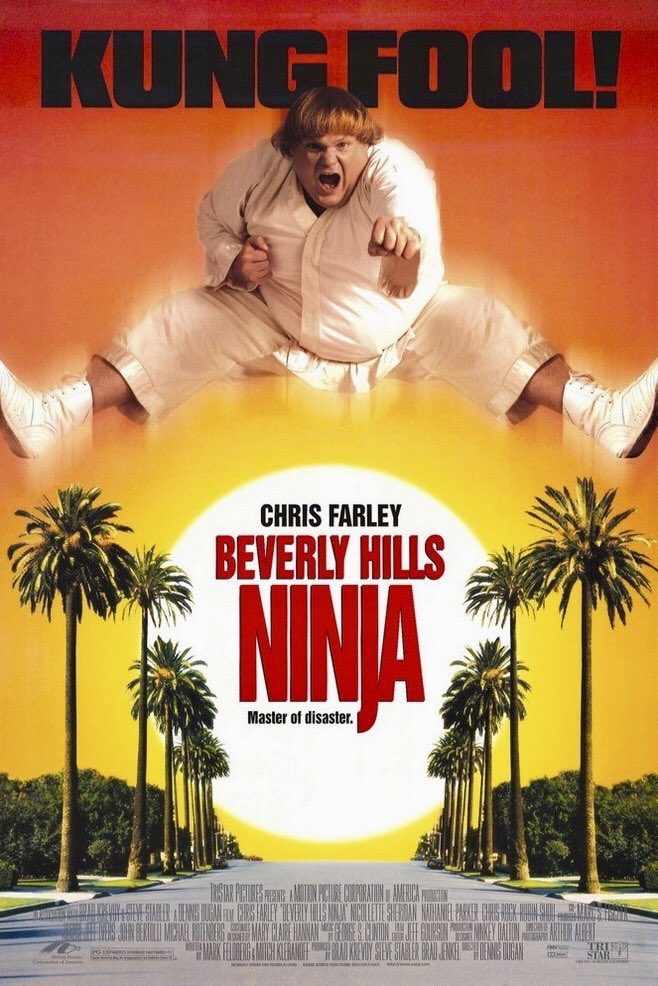 MOVIE HISTORY: 23 years ago today, January 17, 1997, the movie 'Beverly Hills Ninja' opened in theaters!  #ChrisFarley #NicolletteSheridan #RobinShou #NathanielParker #ChrisRock #KeithHirabayashi #WillSasso #FrancoisChau #JasonTobin #JohnPFarley #KevinFarley #BillyConnollypic.twitter.com/uE719ZCpxE