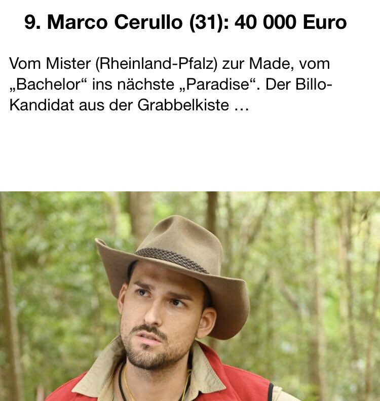 #ibes