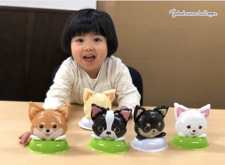 🎈お気に入りの風船をちょこっと簡単に飾れるバルーンスタンド。 小さいお子様でも怪我をせず安心して風船と遊べます。  #バルーンスタンド #ミニわんこバルーン #ミニわんこバルーン #犬の風船 #ディスプレイ #バルーン装飾 #受付装飾 #店内装飾 #スタンド #簡単装飾  #yokohamaballoon #横浜風船 https://t.co/aV7rjSej01