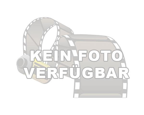 Ferienhaus Kiek ut in Hohwacht. Ferienhaus bestehend aus Wohnzimmer, Küche, Schlafzimmer und Bad. - Ferienhaus für 4 bis 8 Personen in Hohwacht - Kieler Bucht - Hohwachter Bucht - Hohwacht https://www.ostsee-urlaube.de/434.htmlpic.twitter.com/JnEnNNbug3