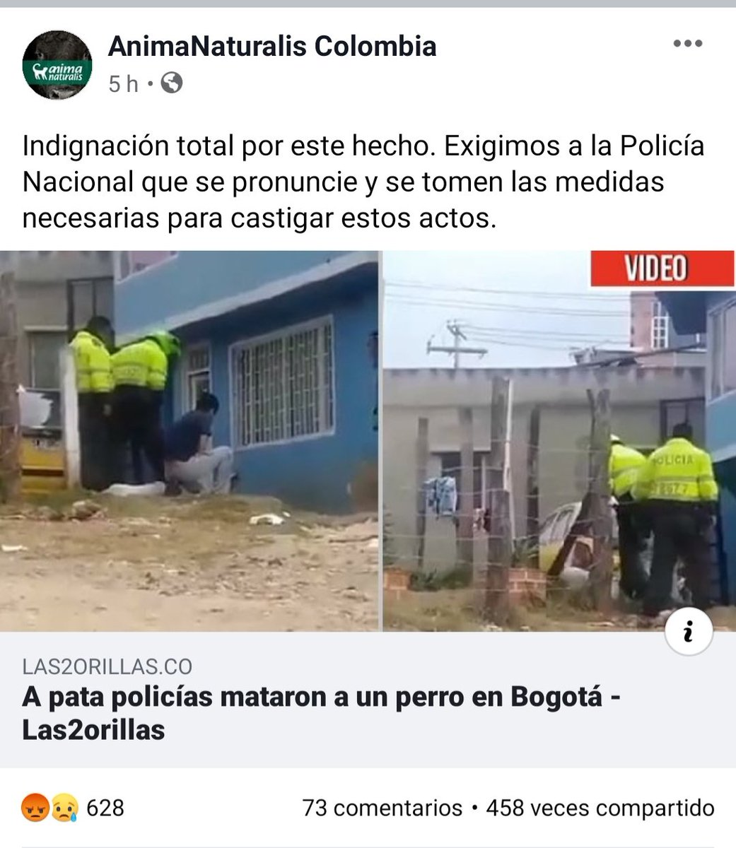 @ClaudiaLopez Por favor, que se haga justicia por el perro pitbull blanco que mataron dos policías en en el barrio Olarte en complicidad del dueño. El video es escalofriante. #PoliciasAsesinos #Amorporlosanimales #Hablandoporlosquenotienenvozpic.twitter.com/ASlCnwyBkz