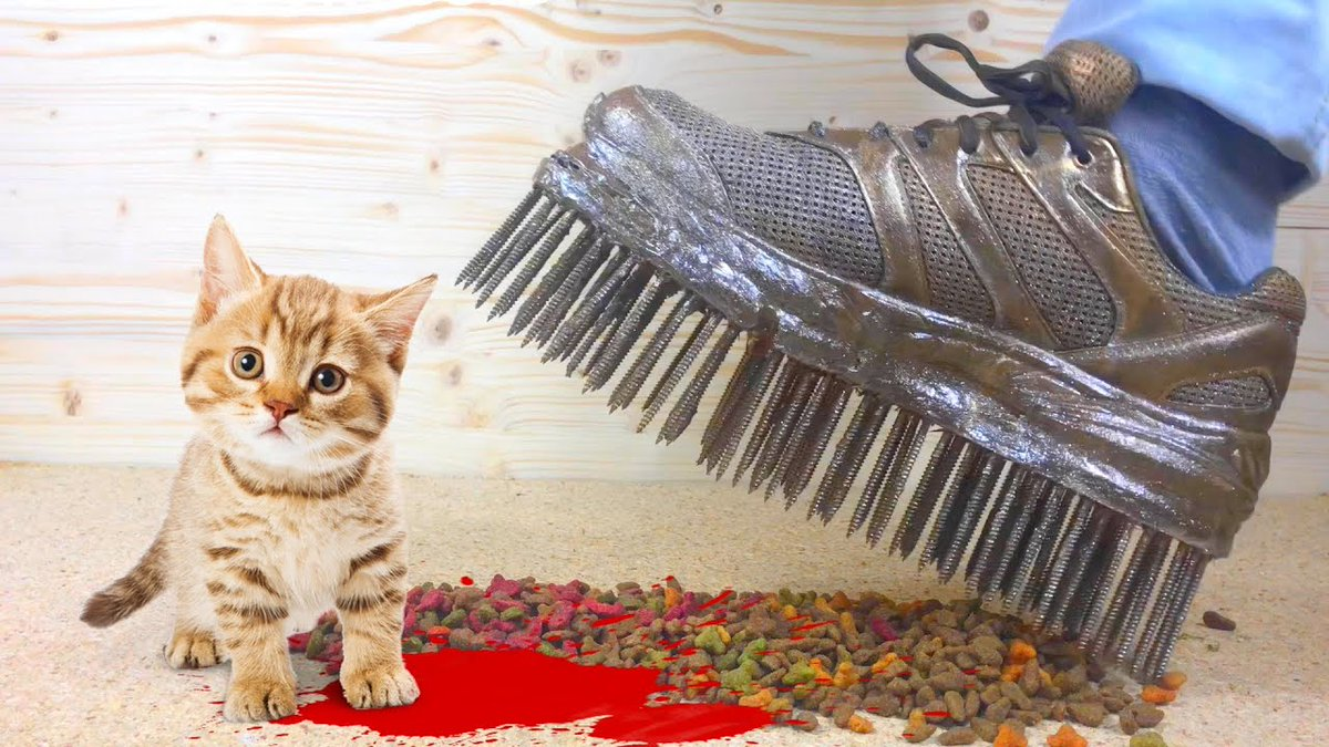 #Experimental #Video : CUTE CATS Vs #Cleats ...   #Cats #Cat #Kittens #Kitten #Kitty #Pets #Pet #Meow #Moe #CuteCats #CuteCat #CuteKittens #CuteKitten #MeowMoe   #Asmr #AsmrCleats #AsmrYoutube #BalloonPoweredCar #BalloonsExperiment   https://www.meowmoe.com/560354/experimental-video-cute-cats-vs-cleats-crushing-crunchy-soft-things/…   .pic.twitter.com/P0Zyr4gFLn