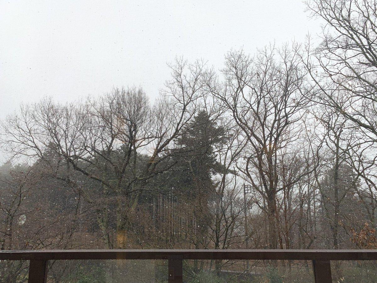 test ツイッターメディア - #jagua r#daimler#mgarage#XJ#XJS#XJR#ジャガー#エムガレージ 南足柄は雪が降っています❗️エンジンかからない車の燃料ポンプを交換していたらふりが激しくなってきました。雪は下手したら綺麗でいい雰囲気なので良いのですが、とにかく寒い❗️手が震えて作業が出来ません。 https://t.co/lr2kd0PAXt