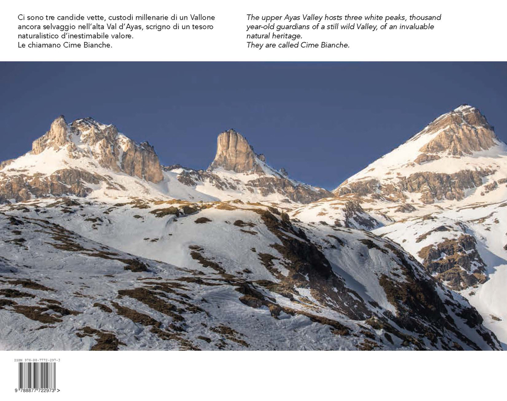 Sherpa07337944 photo