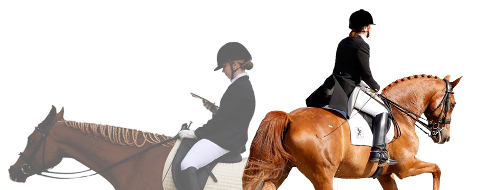 Good luck to all riders and equine participating in the @HoustonDressageSociety Winter Show today and tomorrow! https://buff.ly/2uehMIH  #equine #astariaglobal #dressage #competition #horses #biologics #osteoarthritis #horsetherapy #inflammationrelief  #equestrian #equestrianlifepic.twitter.com/eZZAPUb89X