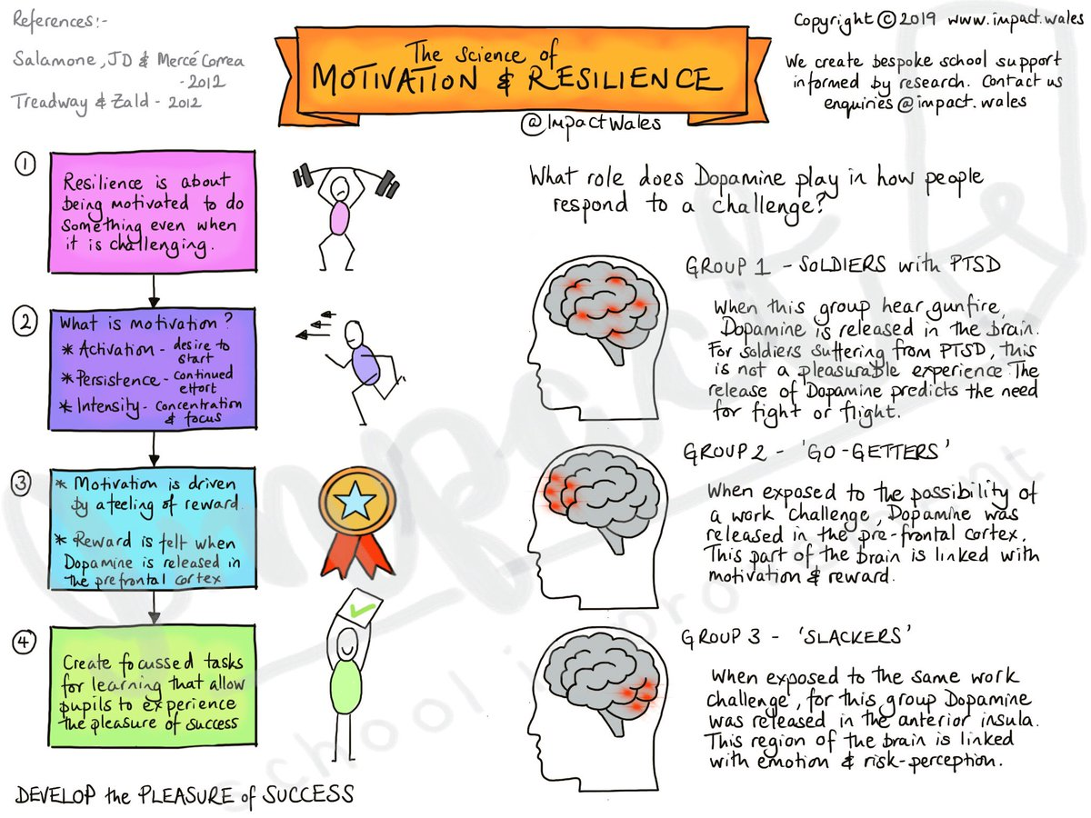 The Science of Motivation & Resilience. How are you developing the pleasure of success?